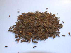 Fenchel (Foeniculum vulgare), getrocknete Samen